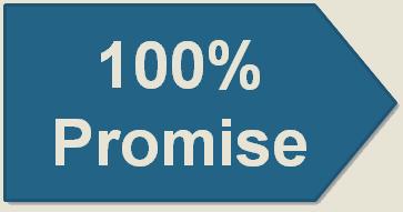 100 promise2