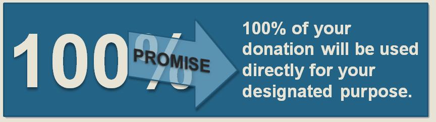 100 promise4